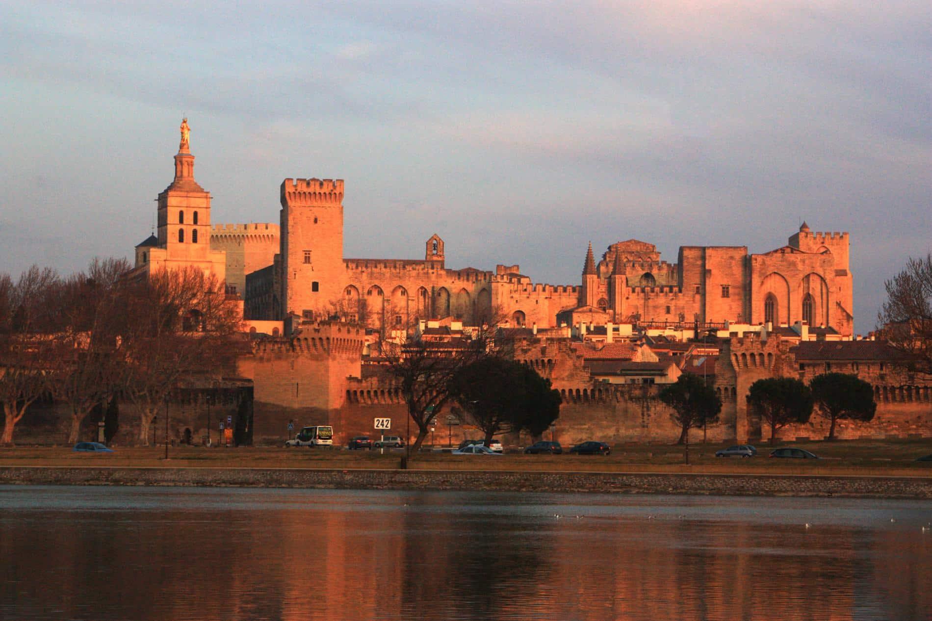 Avignon con Le Palais des Papes è le pont Saint Bénezet, la città circondato, il centro storico