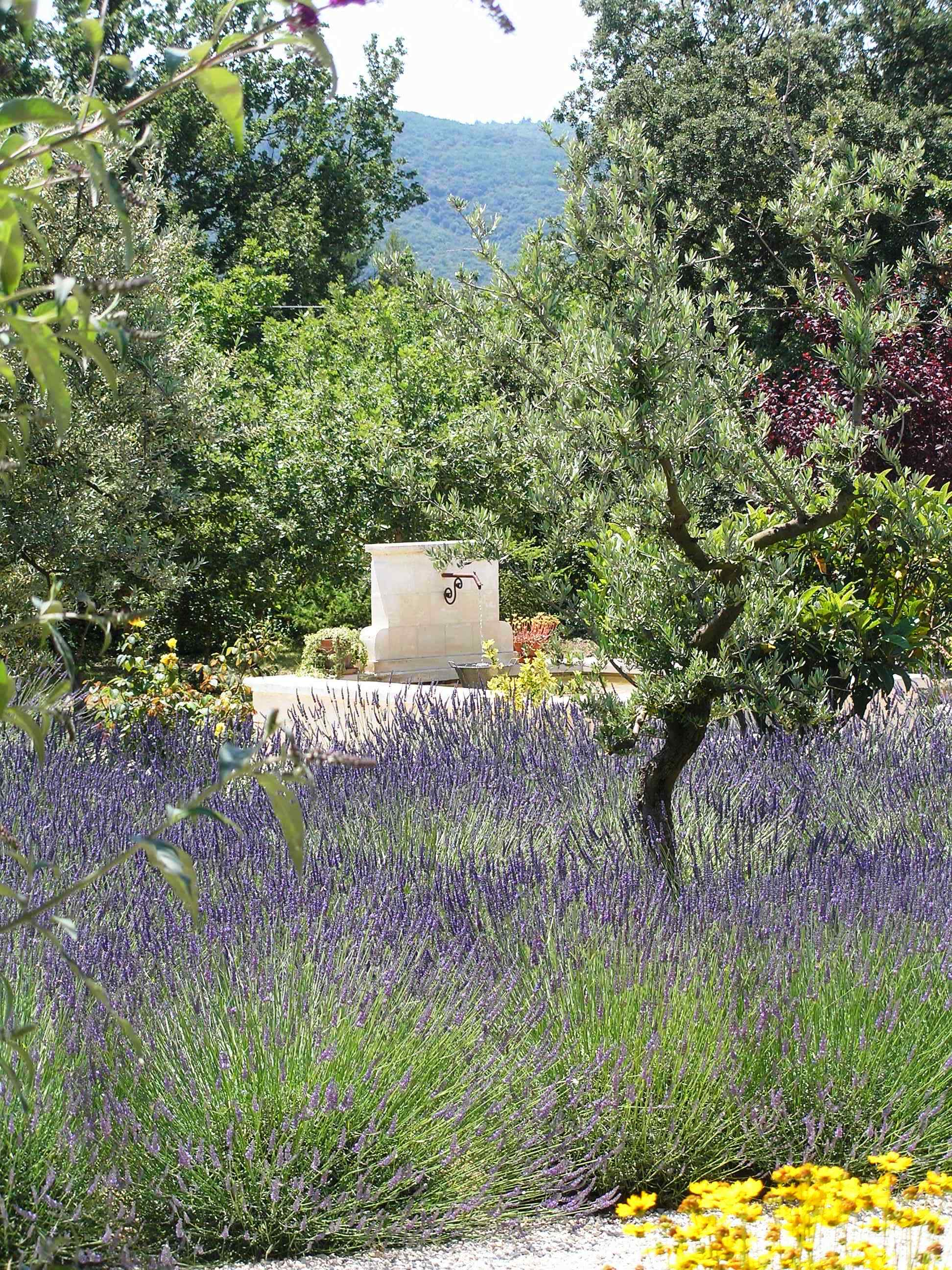 Its abundant vegetation provides a beneficial freshness during the summer, to enjoy the pleasures of nature and leave you intoxicated by the scent of lavender