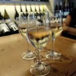 Wine tasting in Luberon area