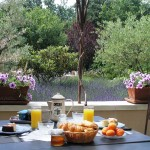 You savor pastries and jams prepared with fruits of our garden as well as croissants, breads, fresh fruit, honey, various cheeses, yogurts, cooked pork meats, with orange juice, coffee, assorted teas, chocolate, …