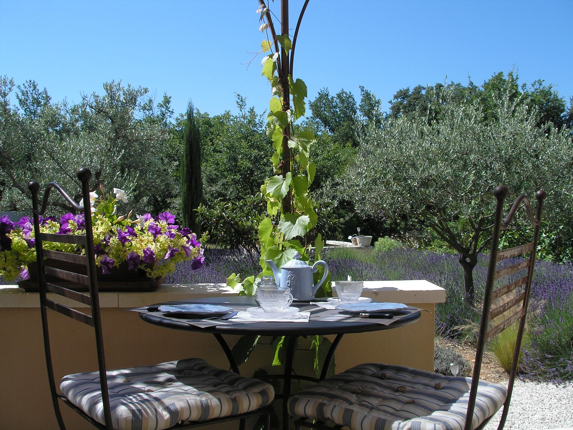 you will have breakfast, facing the garden with lavandes and Luberon mountain